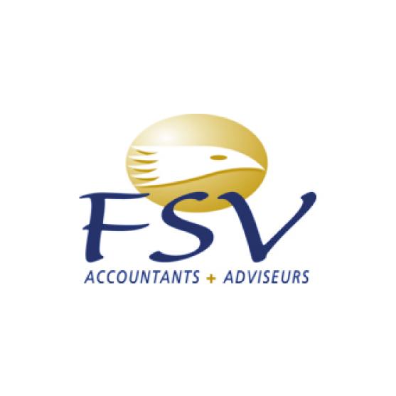 FSV accountants logo Dark